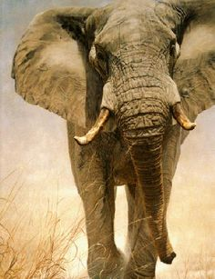 Right of Way - Limited Edition Giclee Prints by John Banovich