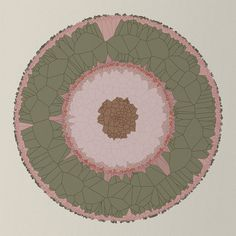 diana-lange-nature-of-code-generative-art