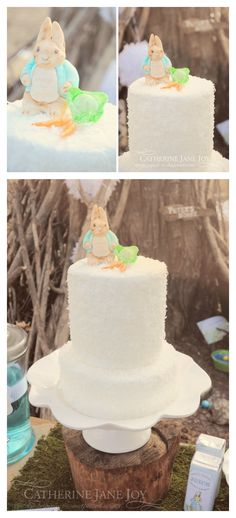 Peter Rabbit Cake by Catherine Jane Joy