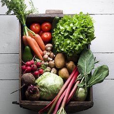 Last Slide - 3 Weeks to a Slimmer You Diet - Health Mobile+