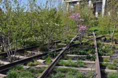 Railroad Reinvented: Climb Aboard the High Line, New York City