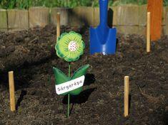 Mikor kell és mikor lehet elvetni a zöldségeket? Balcony Garden, Garden Tools, Vegetables, Yard Tools, Vegetable Recipes, Balcony Gardening, Veggies
