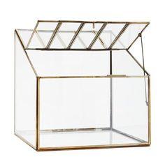 terrarium-verre-madam-stoltz
