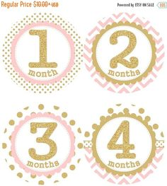 HOLIDAY SALE Baby Monthly Milestone Growth Stickers Gold Glitter Light Pink Dots Chevrons Nursery Theme MS001 Baby Shower Gift Baby Photo Pr