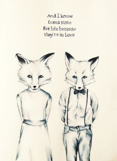 Foxes mate for life.