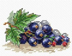 MP Studia Counted Cross Stitch Kit - Ripe Blackcurrants Your Kit count Aida, mouline threads colours), needle, chart and instructions. Size: 8 x 11 cm Cross Stitch Fruit, Cross Stitch Kitchen, Cross Stitch Bird, Cross Stitch Borders, Simple Cross Stitch, Counted Cross Stitch Kits, Cross Stitching, Cross Stitch Patterns, Loom Patterns