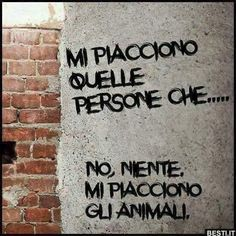 Stars on Italian Walls Funny Photos, Funny Images, Italian Phrases, Sarcastic Quotes, Mood, Wonderwall, Laughter, Memes, Instagram Posts