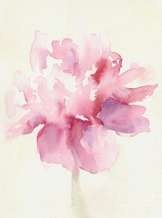 Watercolor gesture. Impression of a Peony? Or of a Rose?  Lovely loose interpretation!!