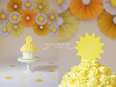 you are my sunshine 1st birthday cake smash portrait session.  ©Alana Marie Imagery www.alanamarieimagery.com www.facebook.com/AlanaMarieImagery