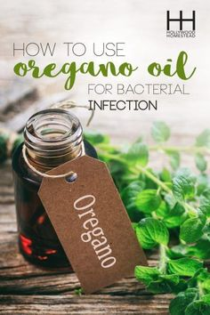 How to Use Oil of Oregano for Bacterial Infections