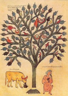 Commentary - Medieval & Renaissance Manuscripts Online - The Morgan Library & Museum Medieval Manuscript, Medieval Art, Illuminated Manuscript, Romanesque Art, Book Of Hours, Canvas Prints, Art Prints, Botanical Illustration, Islamic Art