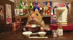 cute hamster in a miniature kitchen