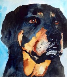 Pet portrait in watercolor of a friend's Rottweiler dog, Breka.