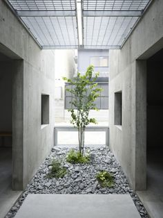 House in Koamicho: Suppose Design Office