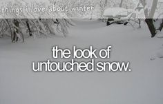 And then I act like a child and pretty much roll in it. XD I love snow.