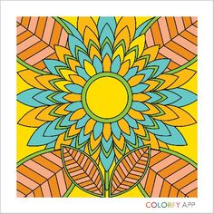Colorfy it's an app