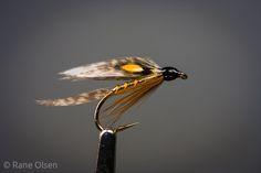 Ray Bergman - Fish Hawk