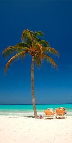 Some day I will get to vacation here, and it will be a lovely, GRAND holiday at that!  Aruba is waiting for me!