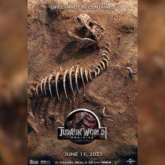 Jurassic Movies, Jurassic World 3, Jurassic Park Series, Jurassic World Fallen Kingdom, Jurassic World Wallpaper, Jurassic World Dinosaur Toys, Fall City, Michael Crichton, The Lost World