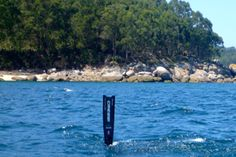 Spearfishing fresh water Nationals registration now open #examinercom