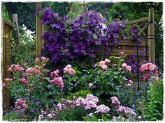 Seasons in the garden - high / late summer