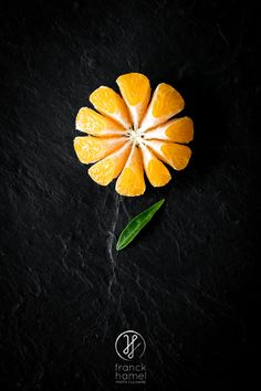 Food photographer : Photo