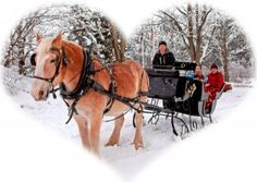 How else can you describe COMFORT and JOY than sharing than bundling up, sipping hot cocoa and sharing a warm quilt with a loved one(s) on a horse drawn carriage trotting in the snow?