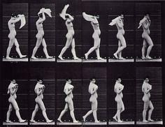 Eadweard Muybridge's walking motion study.