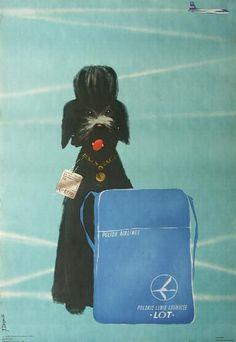 Polish air lines Travel Illustration, Retro Illustration, Vintage Travel Posters, Vintage Airline, Flying Dog, Fantastic Voyage, Realistic Paintings, Pet Travel, Cool Posters