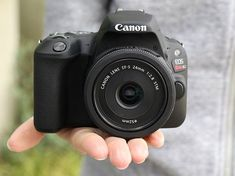 Canon Eos Rebel Sl2 / Eos 200D Review #photography #camera https://www.dpreview.com/reviews/canon-eos-sl2-eos-200d-review