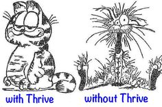 Thrive On!!!!!!! Join Le-Vel, the Thrive experience for FREE   https://www.ThrivininTejas.Le-Vel.com or email me at sharryjones@ymail.com For so many health/emotional benefits AND it's ALL NATURAL