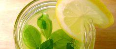 Limonada com manjericão - Lucilia Diniz