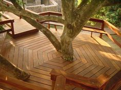Best patio deck around tree 40 ideas Tree House Deck, Tree Deck, Tree House Plans, Backyard Retreat, Backyard Patio, Backyard Landscaping, Design Hotel, Deck Design, Outside Living