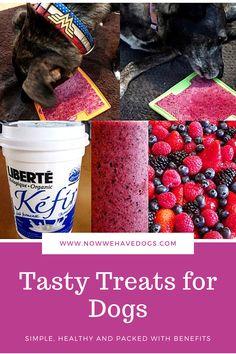 Diy Dog Treats, Homemade Dog Treats, Healthy Dog Treats, Yummy Treats, Baby Food Recipes, Dog Food Recipes, Apartment Dog, Dog Enrichment, Fun Cookies