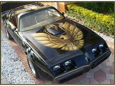 1979 Pontiac Firebird trans Am  I dated a guy who had one just like this. HOT car. spt