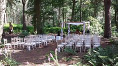 Woodland wedding. Abbeywood Estate, Delamere