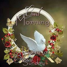 Good morning...Have a Blessed Sunday