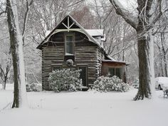 160 years-old log house, on the shore of Lake Erie.