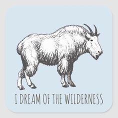 I Dream Of The Wilderness Mountain Goat Square Sticker cinque terre italy hiking, hiking tattoo, hiking backpack small Hiking Tattoo, Cinque Terre Italy, Hiking Shirts, Camping Coffee, Hiking Backpack, Wilderness, My Dream, Colorful Backgrounds, Goats