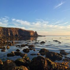 Happy Monday!! What'd you do this Labor Day Weekend? Use the hashtag #pacificmerchants to show us what you did this weekend. Time for some coffee! ☕️☕️☕️☕️☕️#nofilter #monterey #california #beach #tidepools #adventureFollow