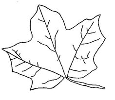 Keep Kids Amused on Car Trips with These Free Fall Leaf Coloring Pages: Maple Leaf