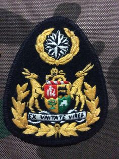 Special Forces WO badge for nutria uniform