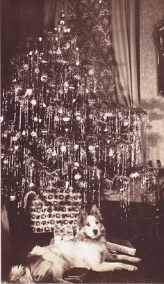 Vintage Christmas - look at that lovely leaded tinsel hanging straight down!