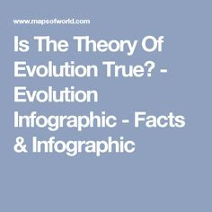 Is The Theory Of Evolution True? - Evolution Infographic - Facts & Infographic