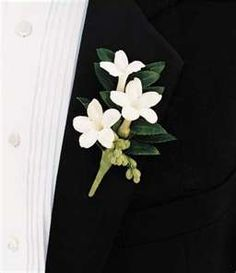 """Exactly what I want for boutonnieres for groomsmen b/c they look like stars, and we're doing the moon and stars """"theme"""""""