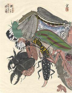"""Dedicated to Arcimboldo"" series / Insects by Tsuruya Kokei   〈アルチンボルドに捧ぐ五題〉の内 虫 弦屋光溪"