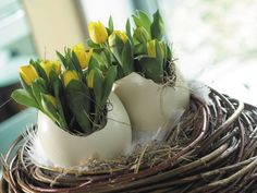 Easter arrangement with tulips