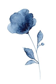 Ellen Wilberg - Watercolor painting of an indigo flower with leaves and white details. Watercolor Trees, Abstract Watercolor, Watercolor Illustration, Simple Watercolor, Tattoo Watercolor, Watercolor Animals, Watercolor Background, Watercolor Landscape, Watercolor Paintings