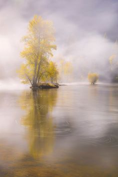 Fall mist (Yosemite) by Seungho Yoo / 500px