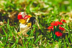 CJ the Legographer's was quite the photographer in February. http://365project.org/cjphoto/365/2016-02